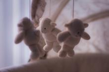 stuffed-toy