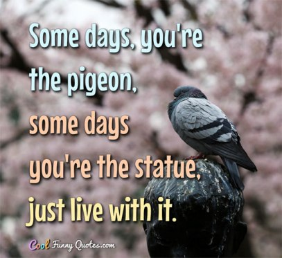 some-days-pigeon-some-days-statue